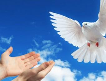 Mãe, ensina-nos a ser transmissores da paz - 01/01/2020
