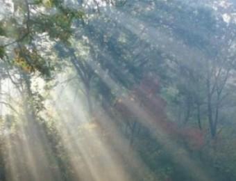 Jesus é a luz que nos ilumina - 06/05/2020
