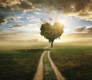 O caminho espiritual silencioso de transformação 16/06/2021