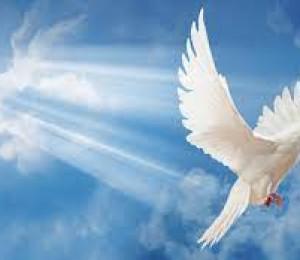 Jesus envia o Espírito Santo 19/05/2021